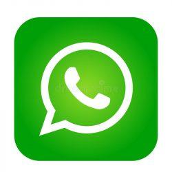 vector-de-la-muestra-del-elemento-logotipo-icono-whatsapp-en-app-móvil-verde-el-fondo-blanco-r-139246467